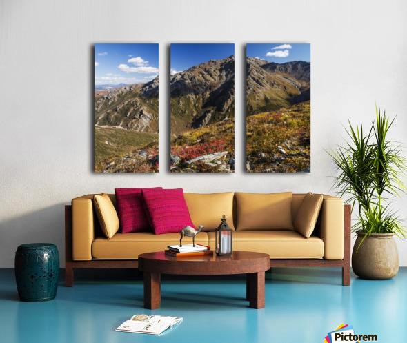 Landscape in the rocky high country of Denali National Park and Preserve, interior Alaska; Alaska, United States of America Split Canvas print