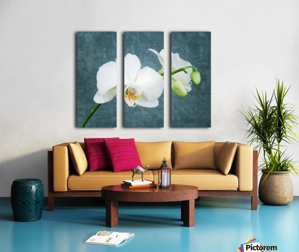 Zen White Orchid Split Canvas print