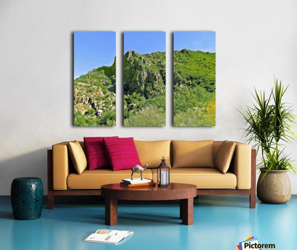 Jerome-3 Split Canvas print