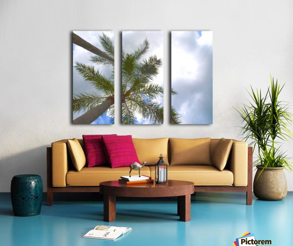 HDR Palm trees looking up against a cloudy sky Split Canvas print