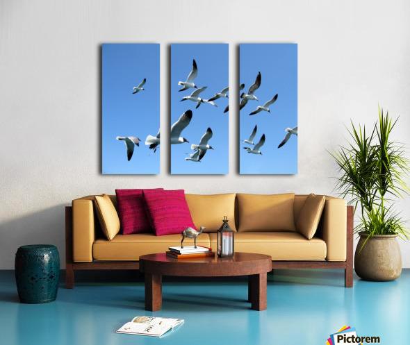 Seagulls against a clear blue sky Split Canvas print