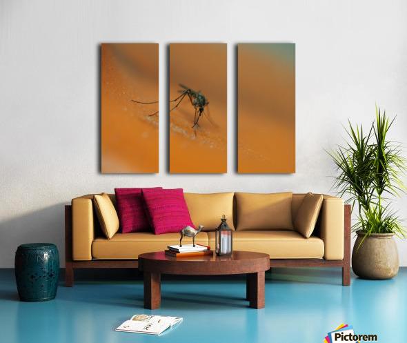 Mosquito! Split Canvas print