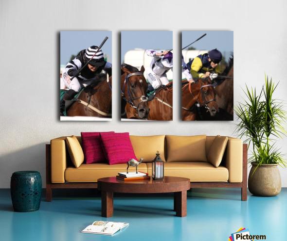 Whip race Split Canvas print