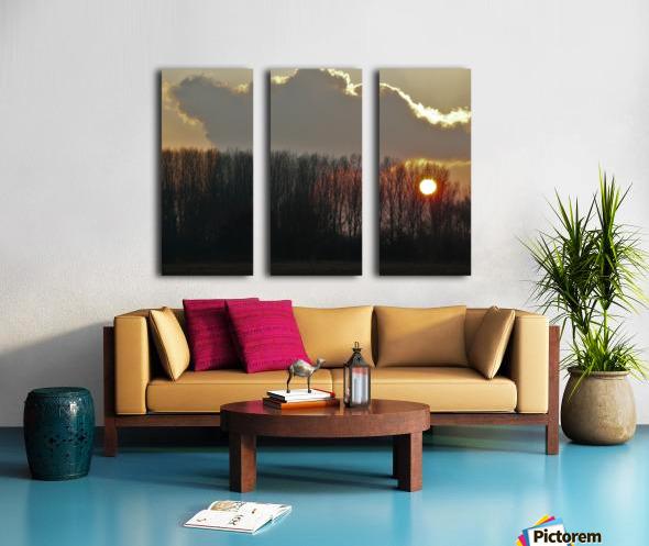 Winter trees Split Canvas print