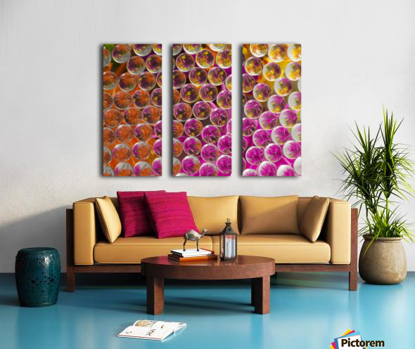 FLOWERS REFRACTION 5 Split Canvas print