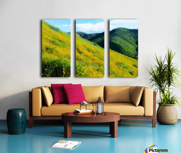 yellow poppy flower field with green leaf and green mountain and cloudy blue sky in summer Split Canvas print