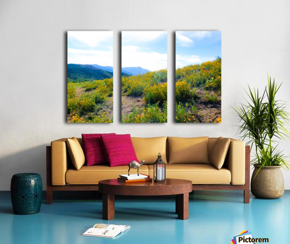 yellow poppy flower field with green leaf and blue cloudy sky in summer Split Canvas print