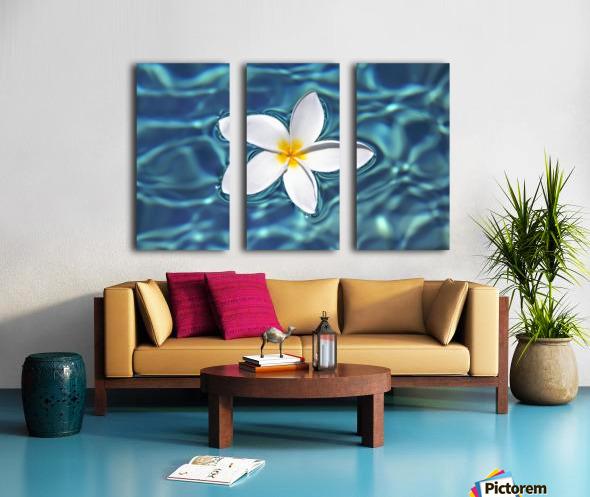 Plumeria flower floating in clear blue water. Split Canvas print