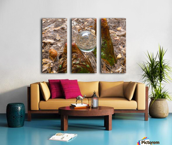 HDR CRYSTAL BALL BETWEEN TWO CYPRESS KNEES Split Canvas print
