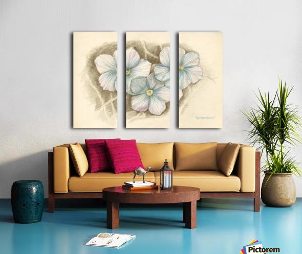 Linum Narbonense Split Canvas print