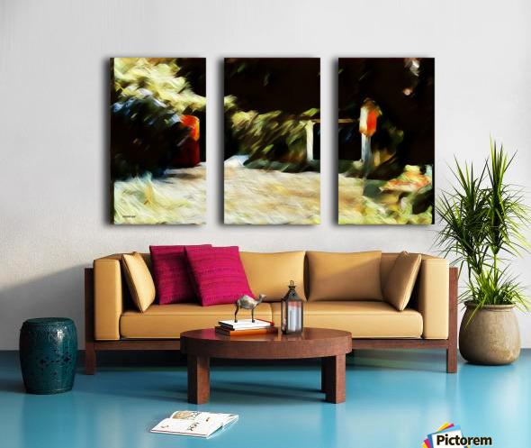 Nathans garden  Split Canvas print