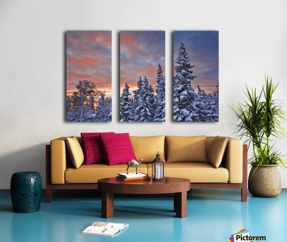 View Of Snow Covered Spruce Trees In A Rural Area Of Anchorage At Sunset, Southcentral Alaska, Winter Split Canvas print
