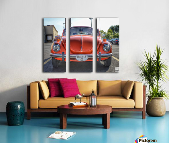 Orange Beetle Split Canvas print