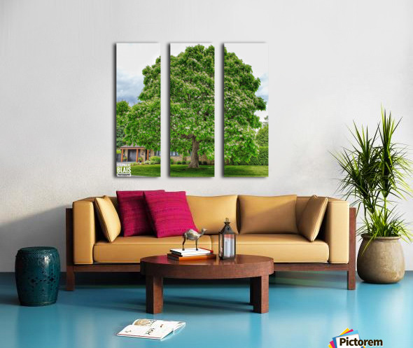 Blooming Tree Split Canvas print
