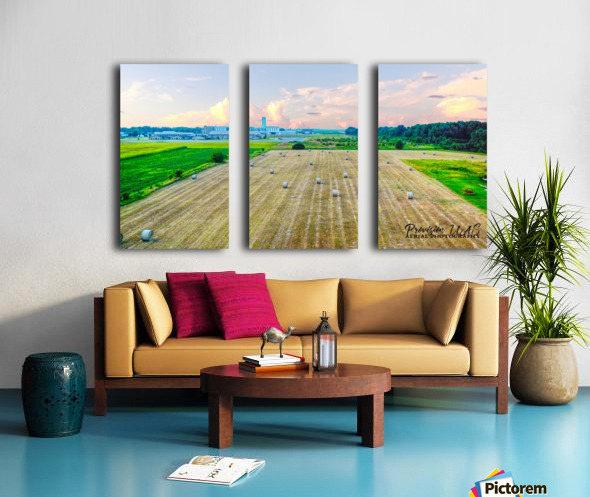 Carlisle, AR | Carlisle Highschool Split Canvas print