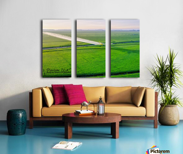 Carlisle, AR | Crop Duster Artistic Split Canvas print