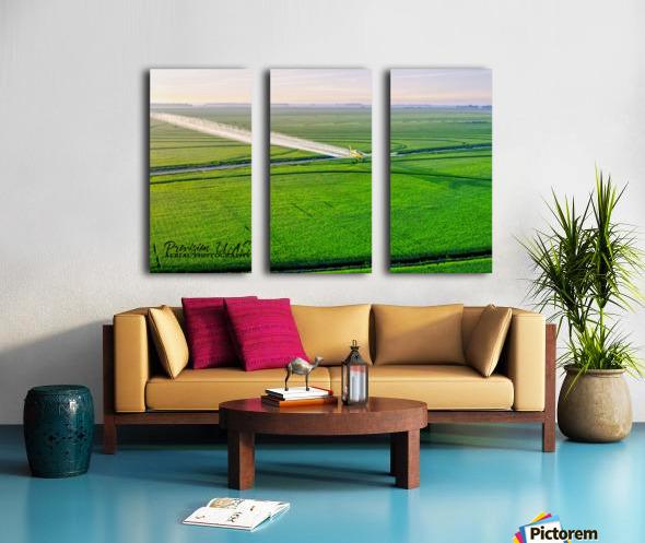 Carlisle, AR   Crop Duster Artistic Split Canvas print