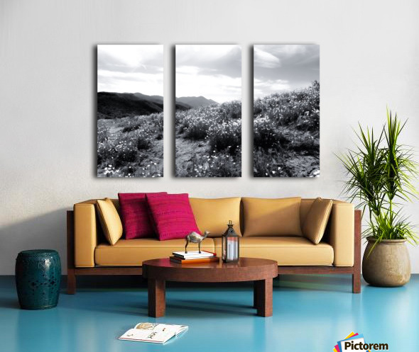 poppy flower field with mountain and cloudy sky in black and white Split Canvas print