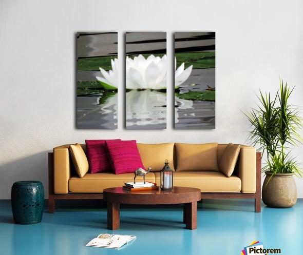 FloweringLilyPad Split Canvas print