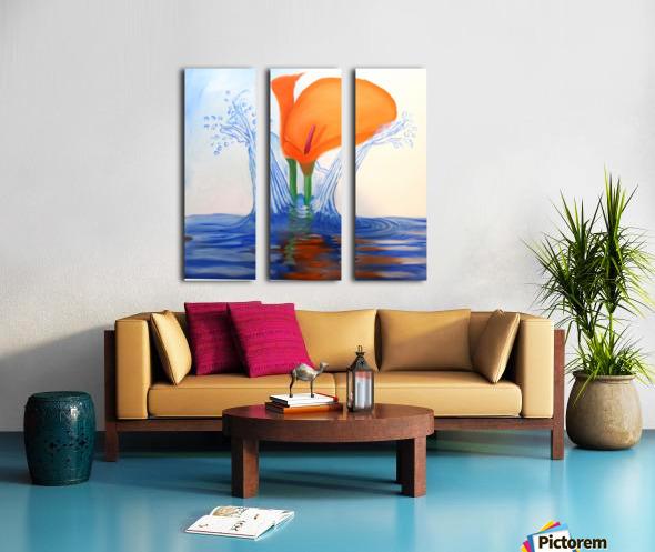 IMG_0665 Split Canvas print