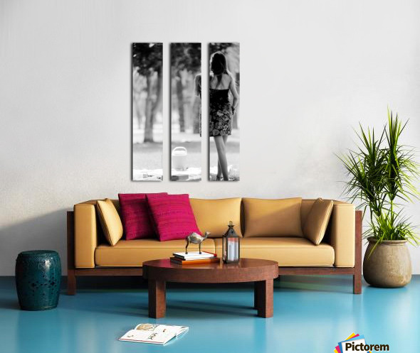29940005 Split Canvas print