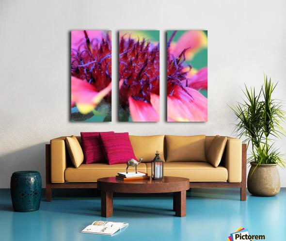 Sun Flower Macro Split Canvas print