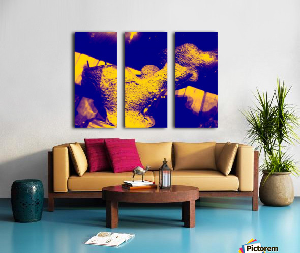 PSX_20171009_231822 Split Canvas print