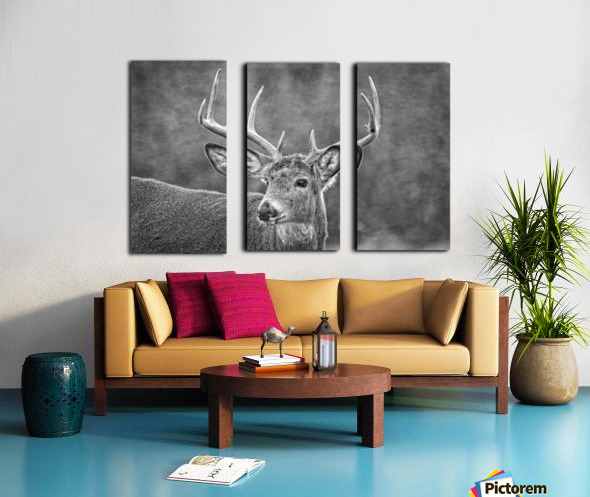 Stud Split Canvas print