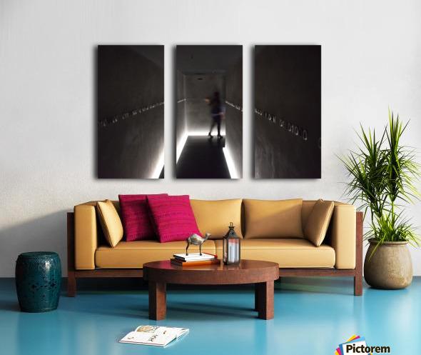 Australian Ghost  Split Canvas print