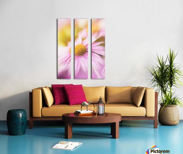 Dreamy Pink Coneflower  Split Canvas print