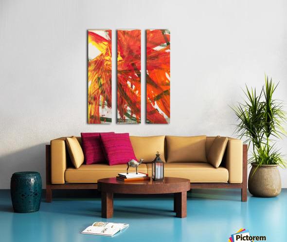 IMG_4741 Split Canvas print