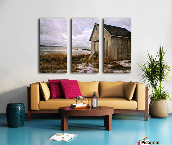Weathered Split Canvas print