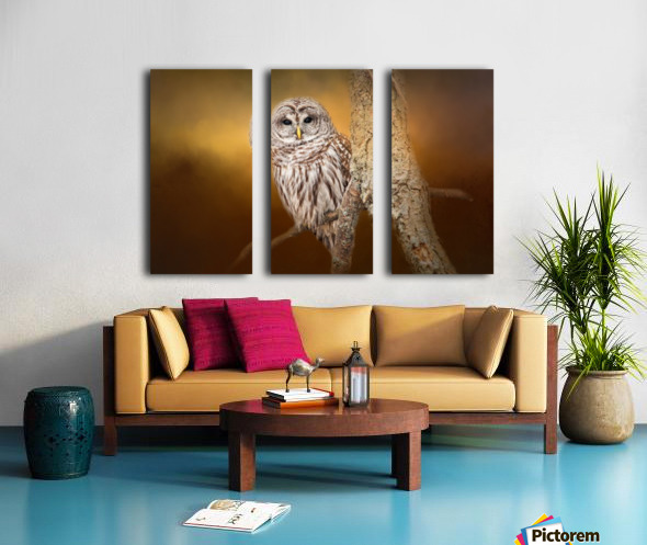 Seen Split Canvas print