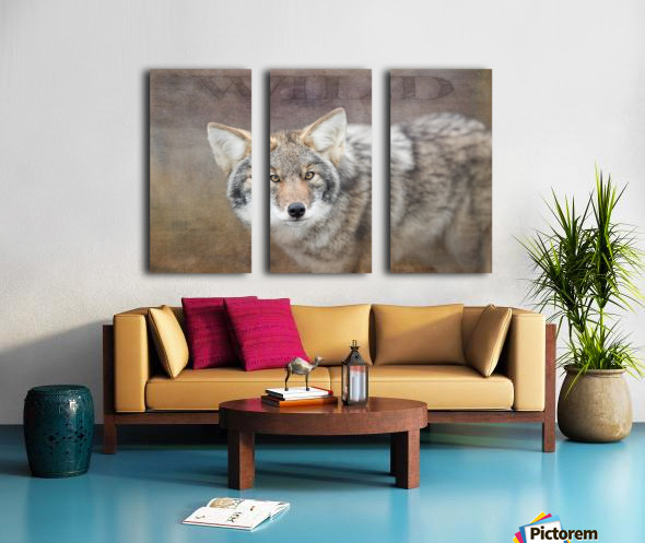 Wild Split Canvas print