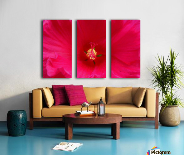 Pistil painted Split Canvas print