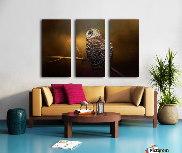 Textured Strix Varia Split Canvas print