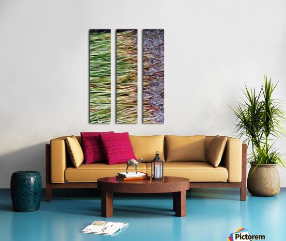 Cut Grass and Pebbles Split Canvas print