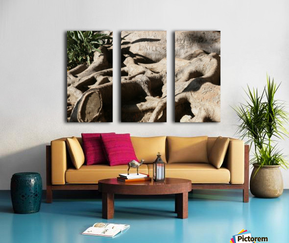 Signed Tree Roots Split Canvas print
