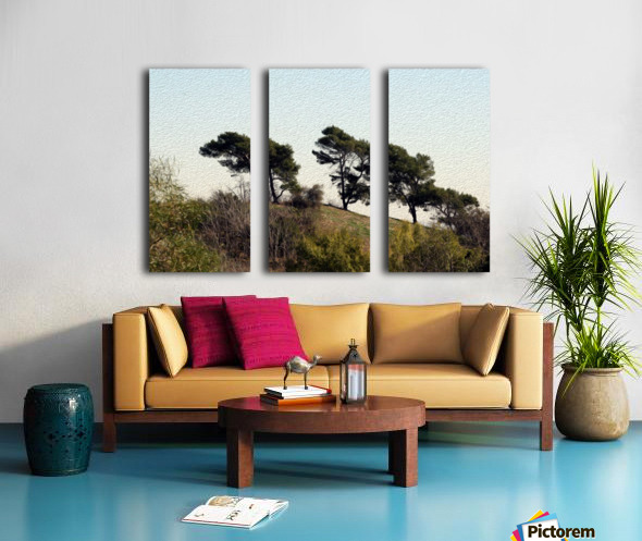 Natural Wind Blown Trees Split Canvas print