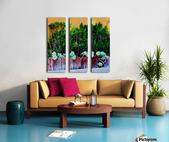 Wall of Succulents Split Canvas print