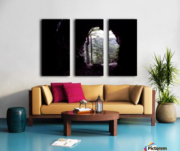 Forest Cave Split Canvas print