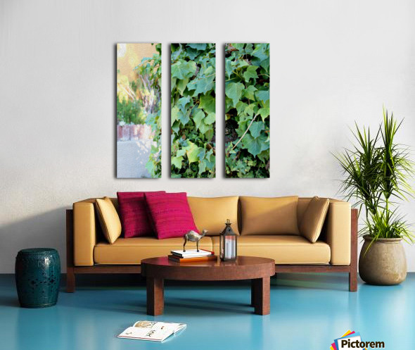 Green Ivy Split Canvas print