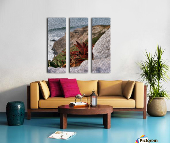 Coastal Red Aloe Vera  Split Canvas print
