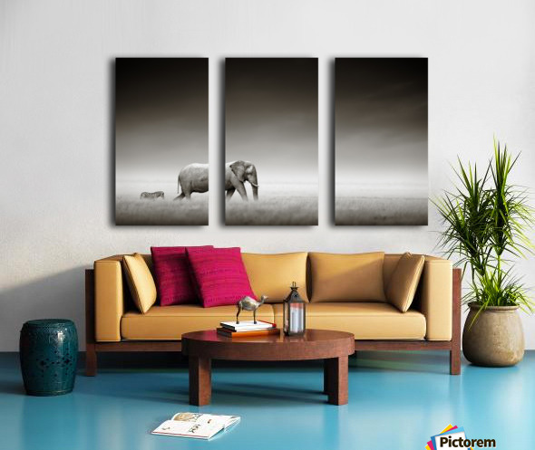 Elephant with zebra (Artistic processing) Split Canvas print