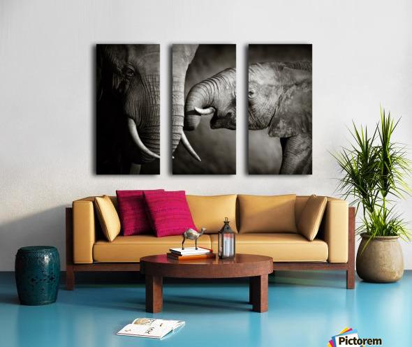 Elephant affection Split Canvas print