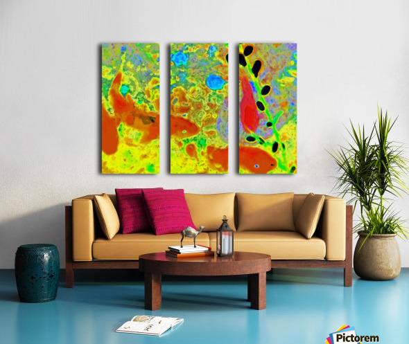 photo Koi Series  2 16 Split Canvas print
