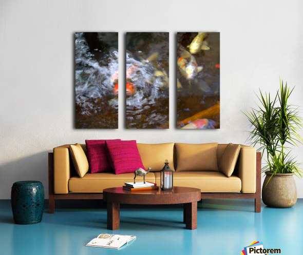 koi fish Split Canvas print
