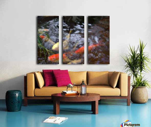 koi fish Split Canvas print