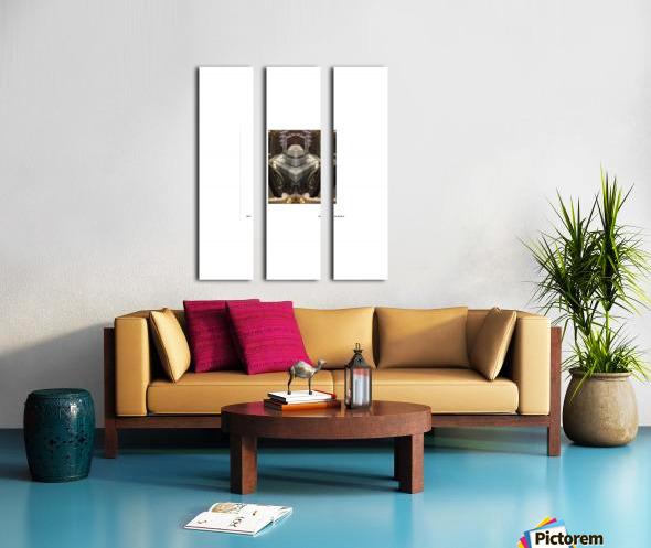 BLUEPHOTOSFORSALE 043 Split Canvas print