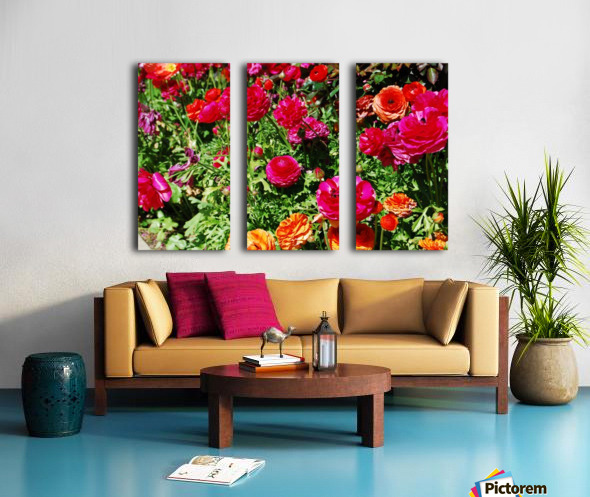 Flowers Growing in a garden Split Canvas print